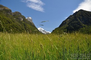 Nový Zéland, fjordland - kraj Pána prstenů