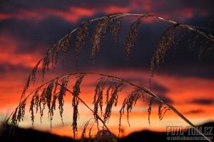 Nový Zéland, barevný západ slunce