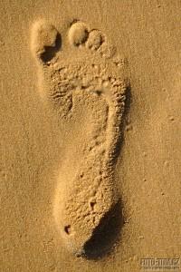 Stopa v písku