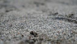 Černohorský písek