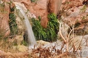 Havasu creek kaňon