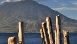 Psík na mole, Panajachel, jezero Atitlan