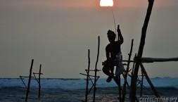 Tradiční Srí Lanské rybaření na kůlech
