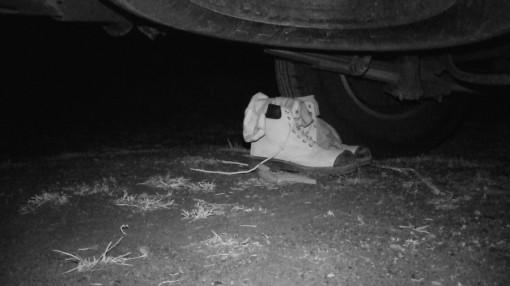 """36/365 Další noc jsme se na našeho pravidelného nočního návštěvníka pochystali. Připravil jsem mu jeho oblíbené boty i s """"čerstvýma"""" ponožkama a k druhému kolu dal zapnutou kameru se zaplým infračerveným režimem. A samozřejmě jsme zalehnuli a pustili si film - který má zviřátko tak moc rádo.  Co jsme natočili? Vůbec nic! Zvíře náš plán asi prokouklo a dnes večer vůbec nepřišlo. Na natočeném záznamu nebylo dočista nic."""
