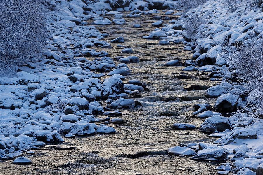 85/365 Whisterem protéká od začátku co tu jsme, ale na fotce ještě nebyl. Skandální! Potok Fitzsimmons Creek, teče z ledovce Fitzsimmons a po deštích mívá i docela skajakovatelnou vodu.