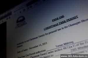 99/365 Vánoce jsou za dveřmi, nejvyšší čas řešit vánoční stromečky. A jak se to dělá v Britské Kolumbii? Vytiskněte si permit z internetu (nebo si ho vyzvednete v některé z kanceláří), pročtete pár pravidel a můžete si ho jít uříznout sami ven. Nic to nestojí. Jedno z pravidel, odkud se smí vánoční stromky řezat - pod vedením vysokého napětí. Není to geniální? Lidi mají radost a údržbářům vysokonapěťových cest to pomůže... Co myslíš, fungovalo by to i v ČR?