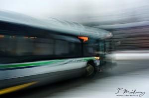 125/365 Jak tak náš nemocnej Fordík čeká, až najdeme kutila co mu vyndá motor, museli jsme se naučit jezdit autobusama, které tu naštěstí taky mají. Pár postřehů oproti ČR (a pražské MHD zvláště): 1) Nastupuje se pouze předními dveřmi. 2) Řidič s úsměvem a mile každého zdraví. 3) Platí se/vhazuje se lístek také v předu (takže tu nejsou potřeba revizoři - neplatíš = nejedeš). 4) Jízda kamkoli -stanici nebo 5 - stojí 2,5 kanadského dolaru nebo měsíční lítačka 65CAD. 5) Většina stanic je na znamení a uvnitř v busu nikdo názvy zastávek nehlásí ani je nikde nepíšou - ze začátku trochu bojovka. 6) Pro jistotu nejsou psané názvy zastávek ani na samotných zastávkách. 7) Opravdu krásný zvyk je, že každý kdo vystupuje nahlas děkuje, řidič to možná občas slyší, možná kolikrát ani ne, ale většina lidí za jízdu poděkuje.