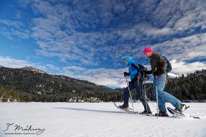 A logické pokračování našich sněžnicových putování? Začali jsme půldnem, pokračovali výletem na den...takže následovat musí samozřejmě dvoudenní sněžnicování s přespáním někde. Už máme vyhlídnutý hut na hřebeni kousek od nás, kam by se mělo dát jít i v zimě :-) Než ho nafotíme osobně, můžete si ho prohlédnout na našem Wild Camping TIPs webu.